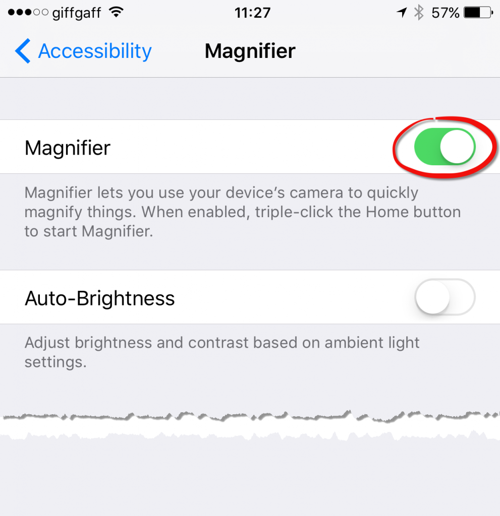 You'll need to turn the Magnifier feature on