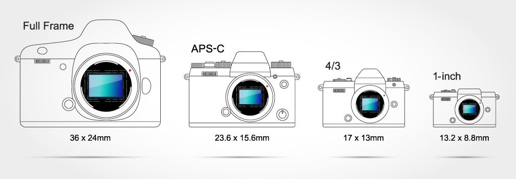 Sensor sizes of mirrorless cameras compared to DSLRs